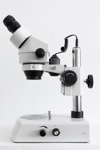 clinical metadata